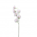 Großhandel Sonstige: Wicke  Gertrud , L42cm, weiß-rosa